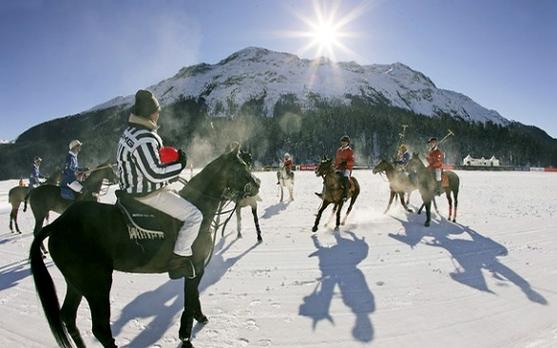 snow polo, поло на снегу