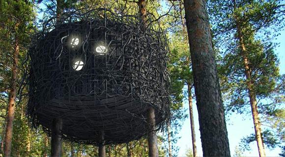 Отели на деревьях. Будем как птицы!