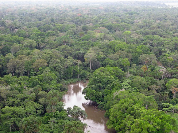 Республика Конго: два новых люкс-лоджа от Wilderness Collection