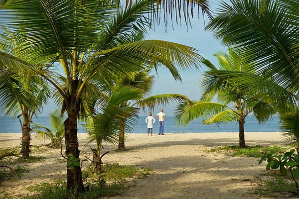 Керала, земля кокосовых орехов